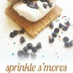 Sprinkle S'mores {Yummy Dairy Free Treat}