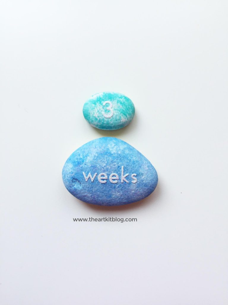 pregnancy childbirth diy milestones track baby and mama weeks months the art kit