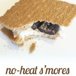 No-Bake S'mores {Dairy Free Treat}