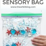 Ocean Sensory Bag {A fun quiet time activity for kids!}