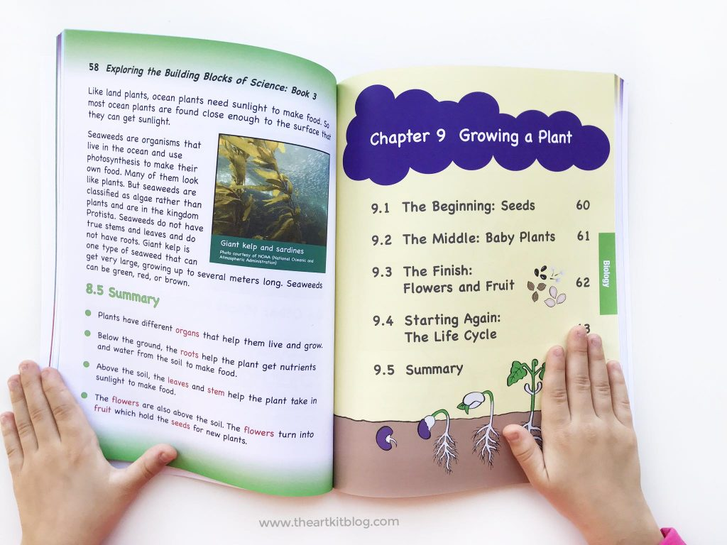 building blocks of science book three third grade review curriculum PINTEREST