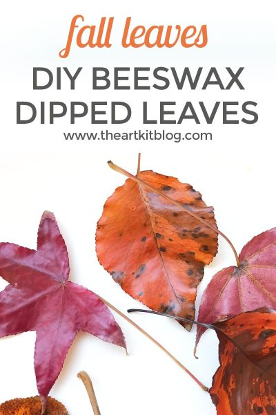 Fall Leaves: Beeswax Dipped Leaves {Simple DIY}