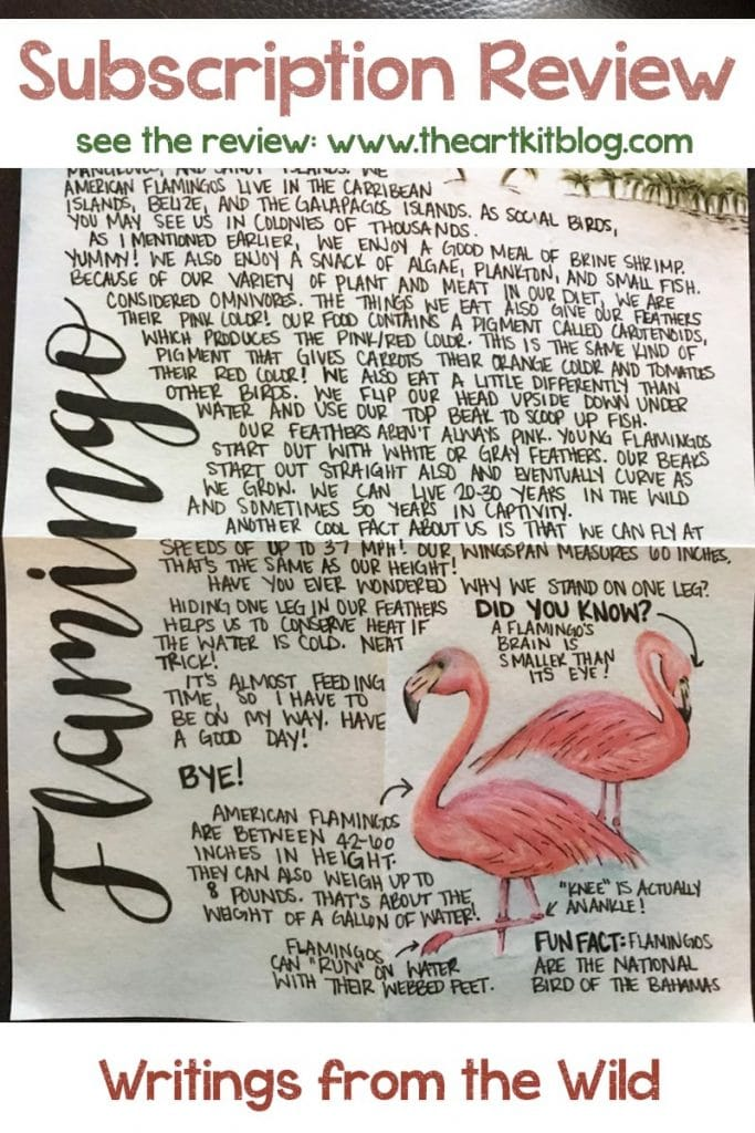 writings-from-the-wild-letter-subscription-review-pinterest-2