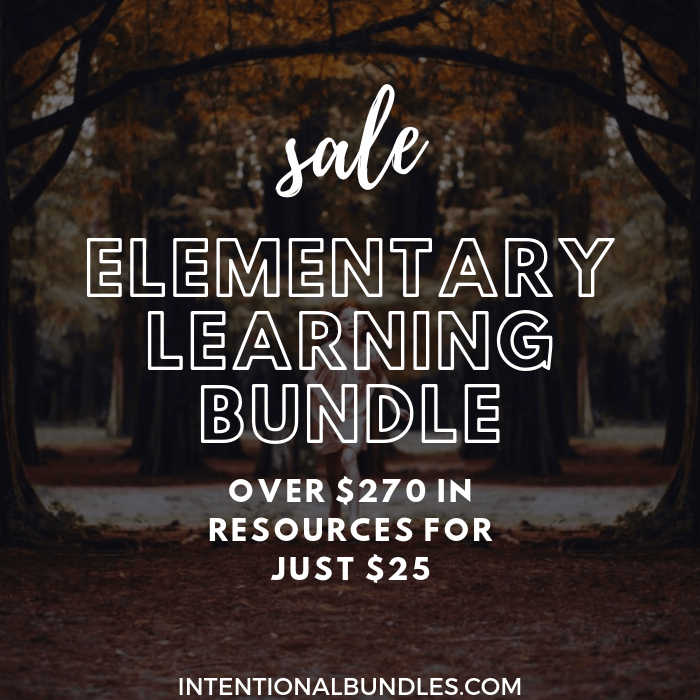 intentional bundles elementary learning printables flash sale