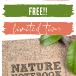 free pdf nature notebook the good and the beautiful